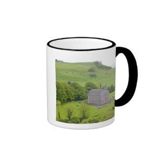 Rock of Dunamase, Ireland. Views of and around Coffee Mugs