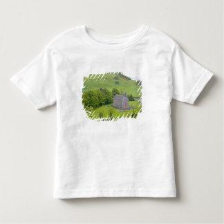 Rock of Dunamase, Ireland. Views of and around Toddler T-shirt