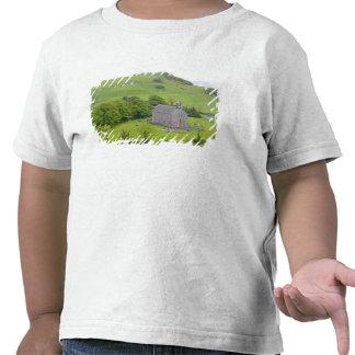 Rock of Dunamase, Ireland. Views of and around T Shirts
