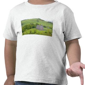 Rock of Dunamase, Ireland. Views of and around Shirts