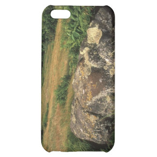 Rock On Hillside iPhone 5C Cases