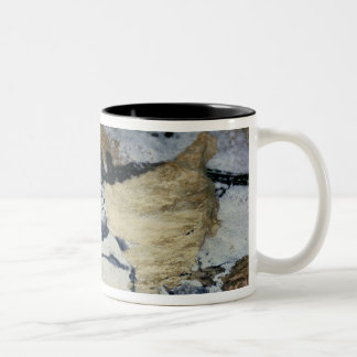 Rock painting of a bull with long horns Two-Tone coffee mug