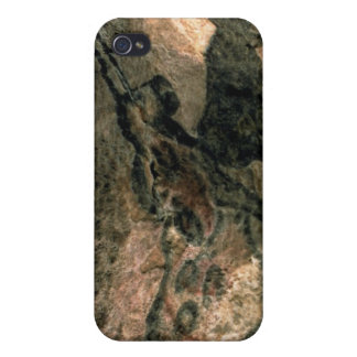 Rock painting of a horned animal, c.17000 BC (cave Covers For iPhone 4