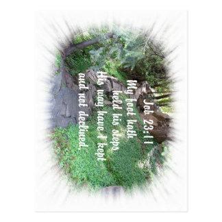 Rock Path Christian bible verse nature photo Postcard