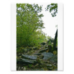 Rock Path Lookout Art Photo