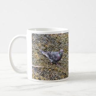Rock Pigeon Coffee Mug