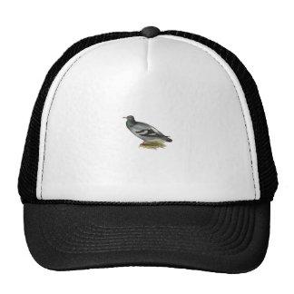 Rock Pigeon Mesh Hat