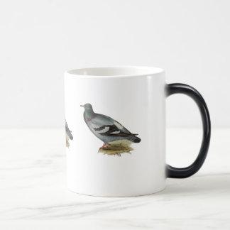 Rock Pigeon or Rock Dove Magic Mug