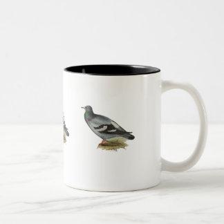 Rock Pigeon or Rock Dove Two-Tone Coffee Mug