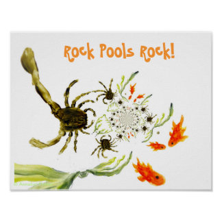 Rock Pool Crabs and Fish Fun Poster