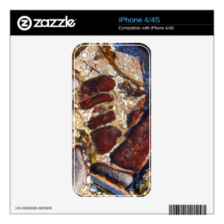 Rock Pool Skin For The iPhone 4S