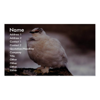 Rock Ptarmigan in Winter Plumage Business Card Template