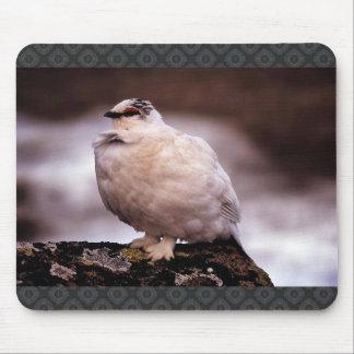 Rock Ptarmigan in Winter Plumage Mouse Pad