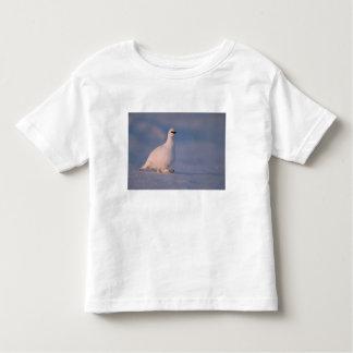 rock ptarmigan, Lagopus mutus, walking in the Toddler T-shirt