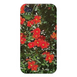 Rock Rose iPhone case iPhone 4/4S Cover