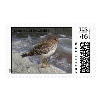 Rock Sandpiper Calidris ptilocnemis Postage Stamps