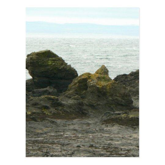 Rock Shore On Cost Postcard