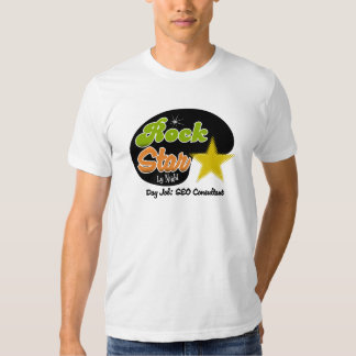 Rock Star By Night - Day Job SEO Consultant Tee Shirt