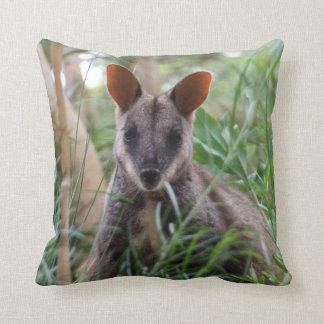 Rock Wallaby Cushion