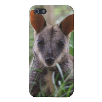 Rock Wallaby iPhone Case iPhone 5 Covers