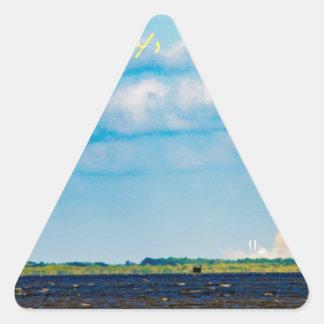 Rocket Launch Triangle Sticker