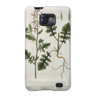 Rocket, plate 242 from 'A Curious Herbal', publish Samsung Galaxy SII Covers