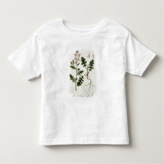 Rocket, plate 242 from 'A Curious Herbal', publish Toddler T-shirt