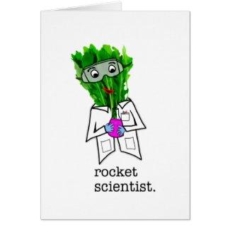 Rocket Scientist: cards