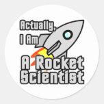 Rocket Scientist Round Stickers