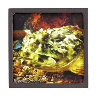 Rockfish Premium Jewelry Box