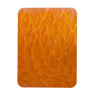 Rockfish Skin Magnet