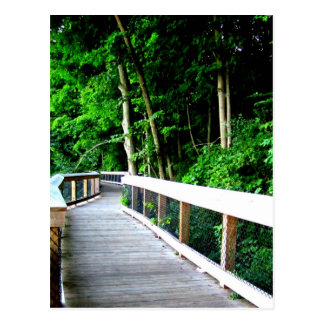 Rockford Michigan Walking Trail Postcard