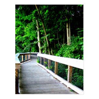 Rockford Michigan Walking Trail Post Card