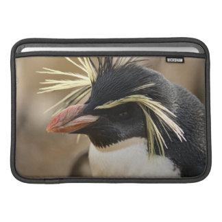 "Rockhopper Penguin  11"" MacBook Sleeve"