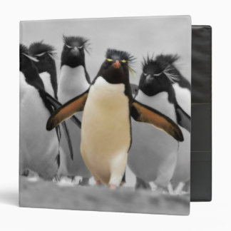 Rockhopper Penguin 3 Ring Binder