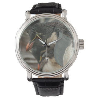 Rockhopper penguin and chick wristwatch