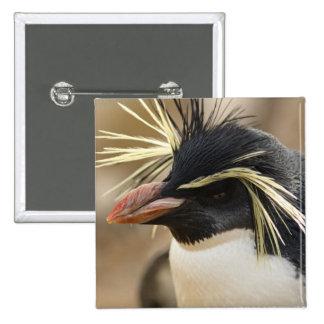 Rockhopper Penguin  Button