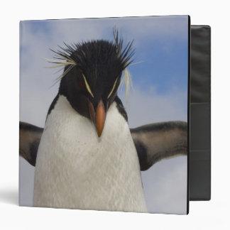 Rockhopper Penguin Eudyptes chrysocome 3 Ring Binders