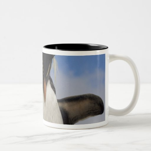 Rockhopper Penguin Eudyptes chrysocome Coffee Mug
