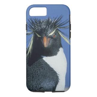 Rockhopper Penguin (Eudyptes chrysocome) iPhone 7 Case