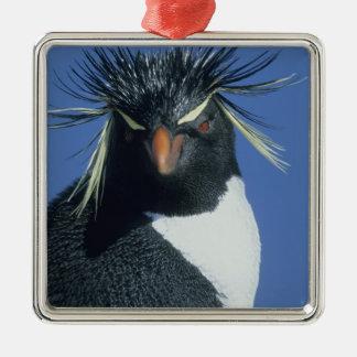 Rockhopper Penguin (Eudyptes chrysocome) Metal Ornament