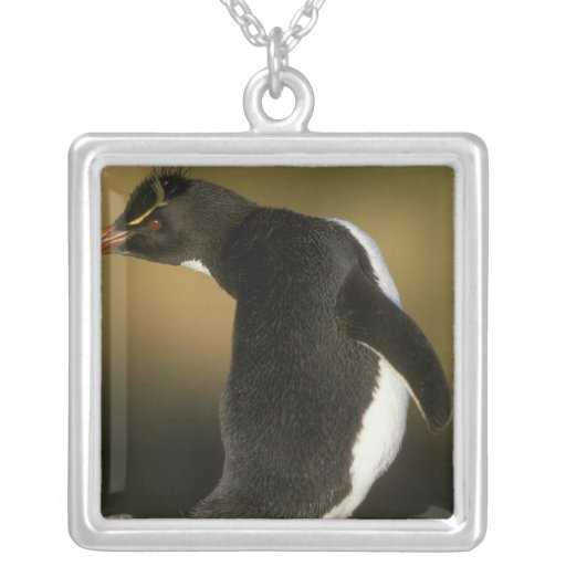 Rockhopper Penguin, Eudyptes chrysocome), Personalized Necklace