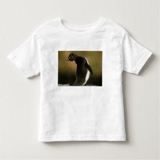 Rockhopper Penguin, Eudyptes chrysocome), T-shirt