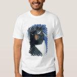 Rockhopper Penguin (Eudyptes chrysocome) T Shirt
