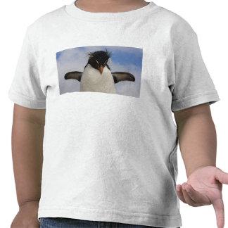Rockhopper Penguin Eudyptes chrysocome Shirt