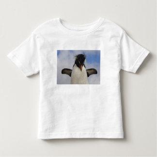 Rockhopper Penguin Eudyptes chrysocome Tee Shirt