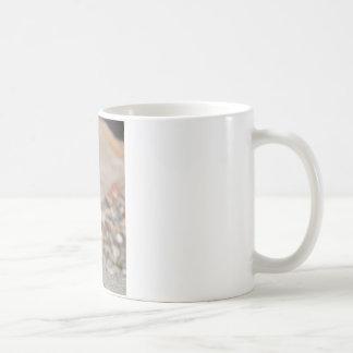 Rockhopper penguin coffee mugs