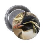 Rockhopper Penguin  Pin
