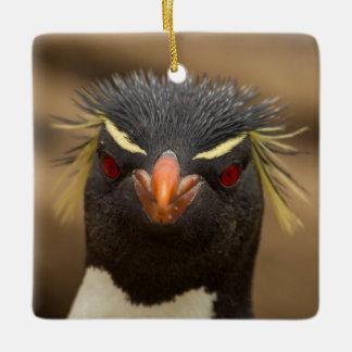 Rockhopper penguin portrait ceramic ornament