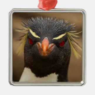 Rockhopper penguin portrait metal ornament